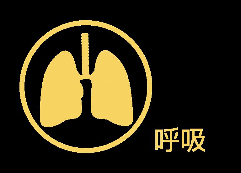 健康研習課程